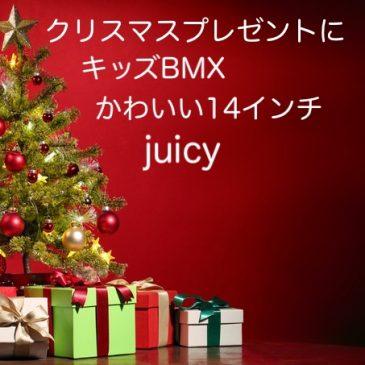 クリスマスのプレゼントに最適!!