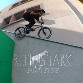REED STARK -SAFARI SOUNDS-