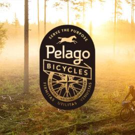 秋ですね〜自転車の季節です。